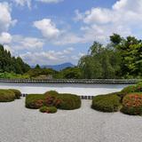 正伝寺のサツキ枯山水庭園
