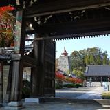 妙満寺の紅葉