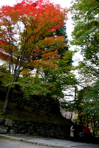 山科毘沙門堂の紅葉