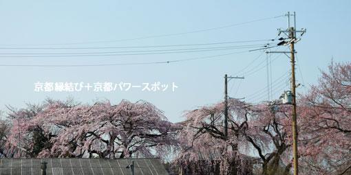 醍醐寺報恩院