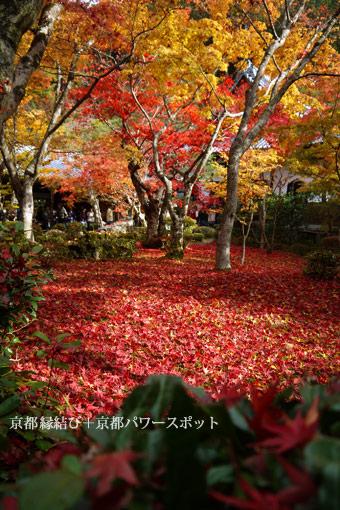 圓光寺の紅葉
