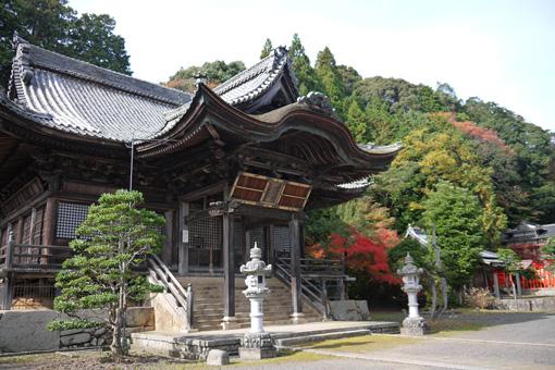 円隆寺の紅葉