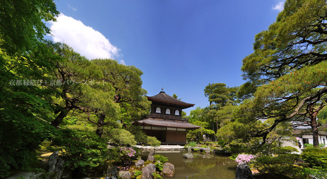 新緑の銀閣寺