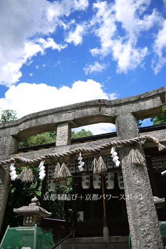 京都御苑の百日紅