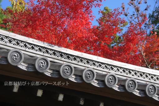 迎称寺の紅葉