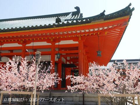 平安神宮の結び木