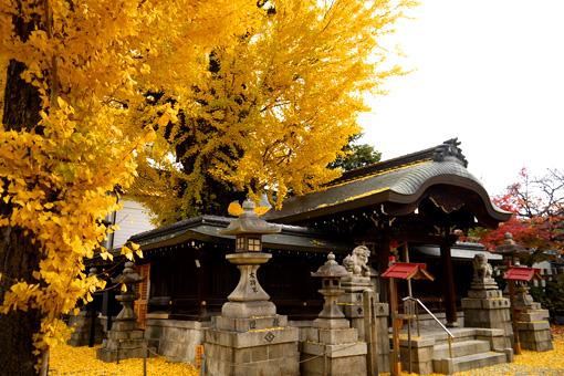 東三条大将軍神社