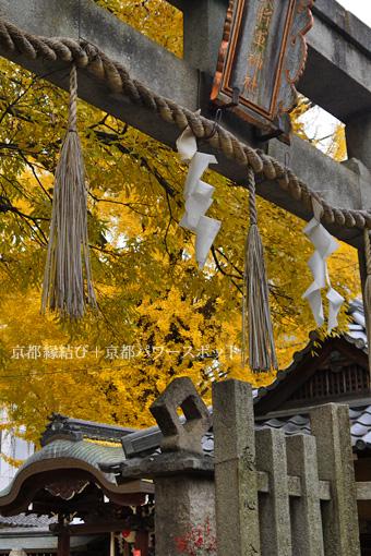 東三条大将軍神社の紅葉