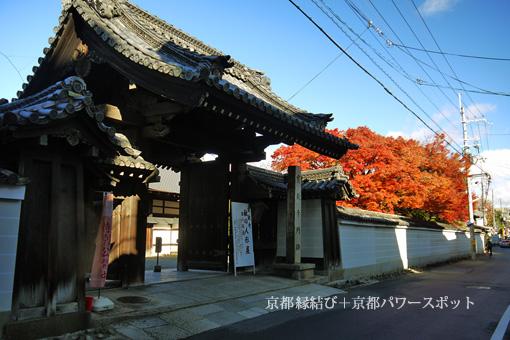 宝鏡寺の紅葉