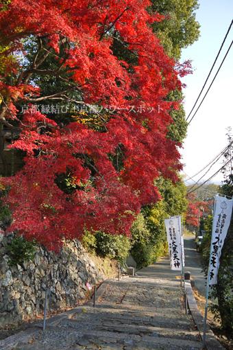 宝積寺の紅葉