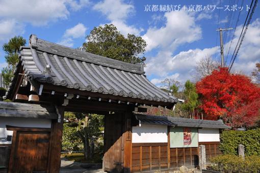 印空寺の紅葉