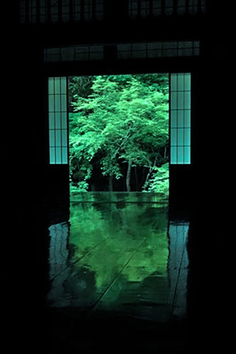 実相院の床緑