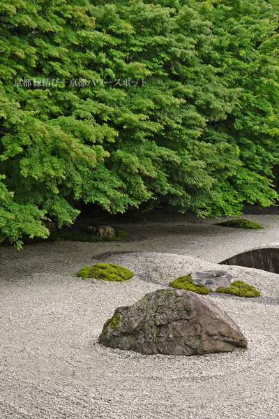 実相院の石庭