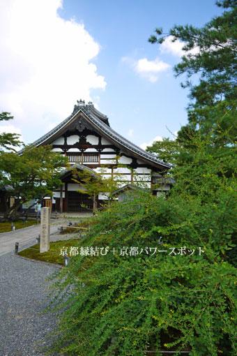 高台寺の萩