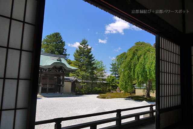 新緑の高台寺 方丈前庭