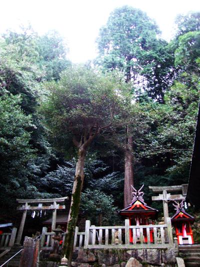 恋志谷神社