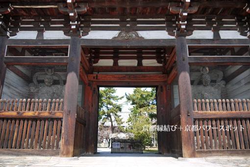 広隆寺の桜