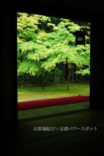 大徳寺高桐院の紅葉