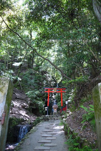 松尾大社 霊亀の滝