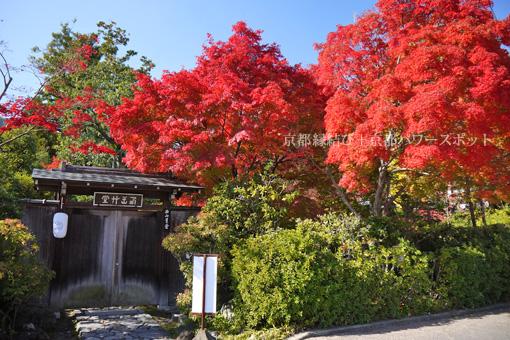 天龍寺妙智院の紅葉