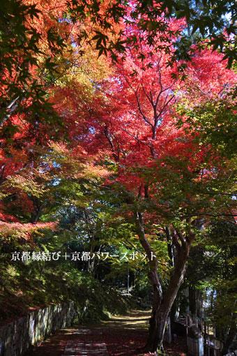 苗秀寺の紅葉
