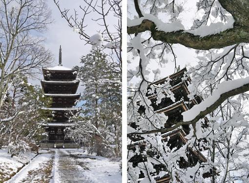 仁和寺の雪景色