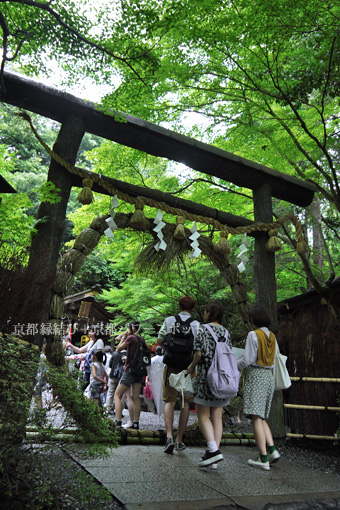 野宮神社の茅の輪