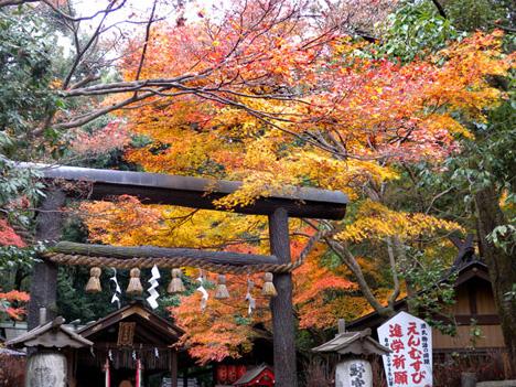 秋の野宮神社