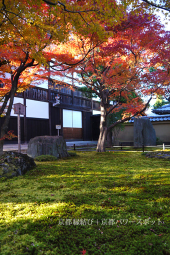 大徳寺黄梅院の紅葉