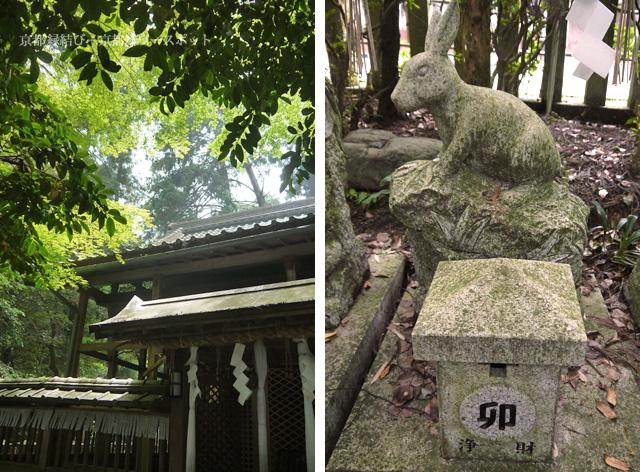 小倉神社のうさぎ