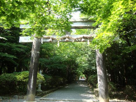 大原野神社の参道