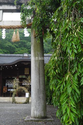 大石神社の茅の輪