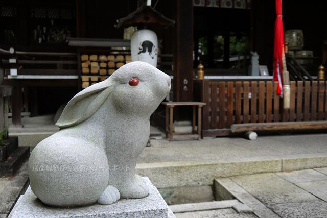 京都のうさぎ神社