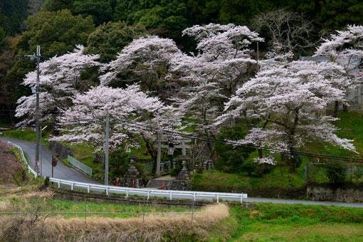 奥山田天神社
