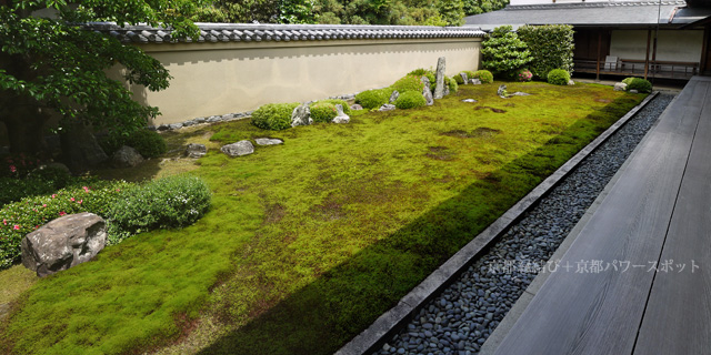 大徳寺 龍源院の枯山水