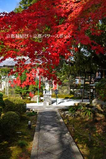 三宝寺の紅葉