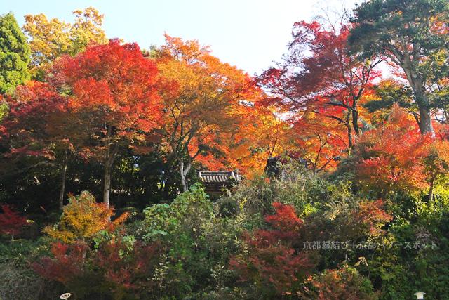 清閑寺の紅葉
