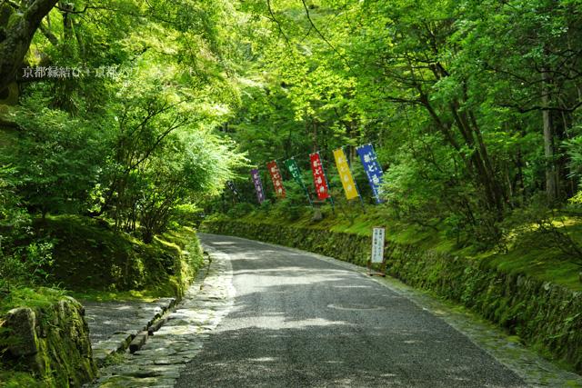 赤山禅院の参道