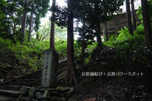 岩王寺の萩