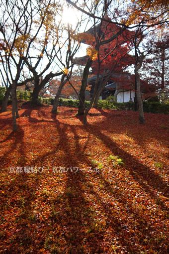 真如堂の散り紅葉