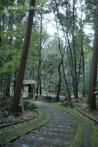 正伝寺の参道