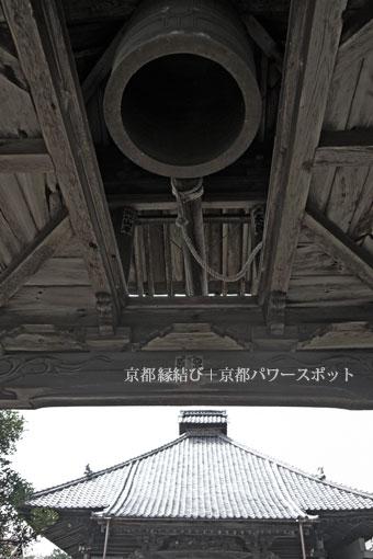 正暦寺の萩