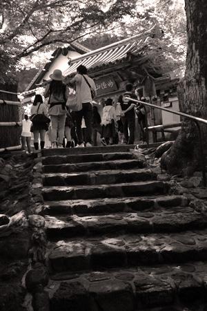 鈴虫寺で縁結び