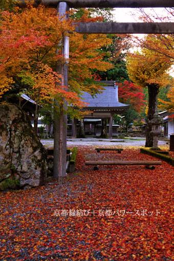 多治神社の紅葉