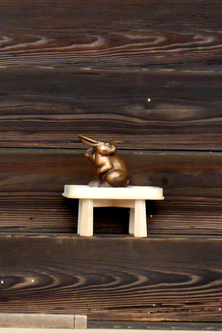 宇治神社 ウサギ