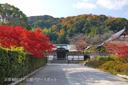 八幡 正法寺の紅葉